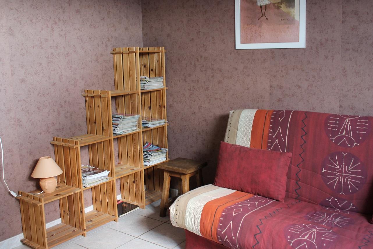Petit salon avec bibliothèque...